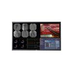 手术显示器 / 4K分辨率 / 液晶 / LED背光