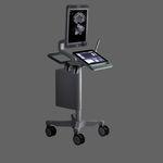 紧凑型平台B超机 / 用于泌尿科超声检查 / 黑白 / 触摸屏