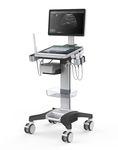 平台型、紧凑型超声诊断仪 / 妇产科用超声成像 / 用于心血管超声检查 / 用于泌尿科超声检查