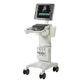 超声工作站 / 用于心血管超声检查 / 急救超声成像