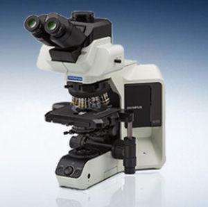 实验室显微镜 / 光学 / 双目 / 三目