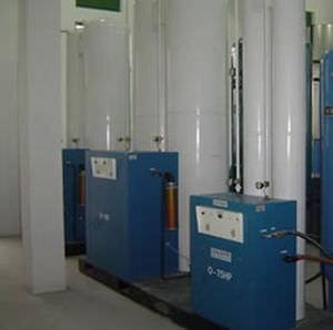 固定制氧机 / PSA / 2 个储藏桶
