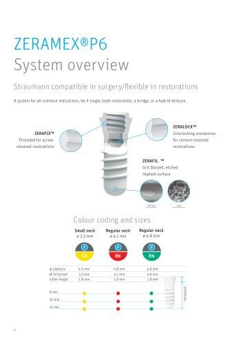 ZERAMEX®P6 Systemoverview
