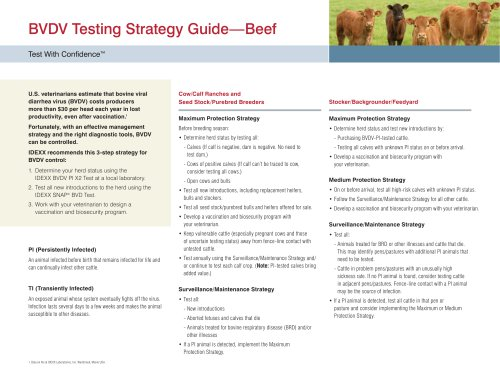 BVDV Testing Strategy Guide—Beef